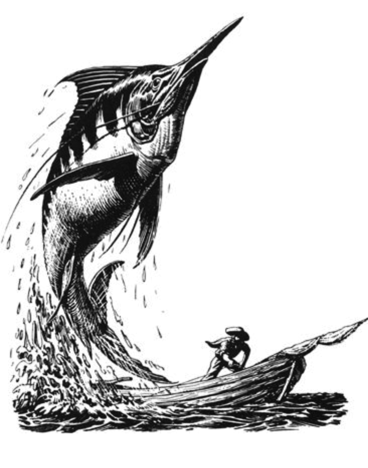 The Old Man and the Sea. Illustration by C.F. Tunnicliffe and Raymond Shepard.